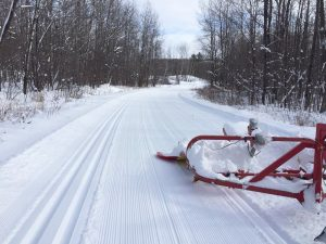 Blue Hills Trail Association grooming this week. photo credit - Blue Hills Trail Association